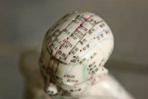 head shot of acupuncture dummy